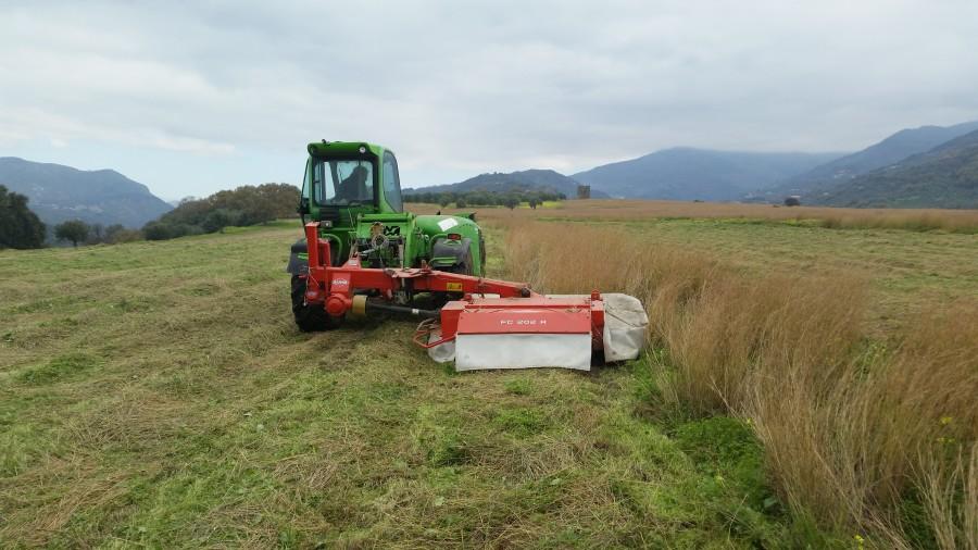 Le attività agricole stagionali